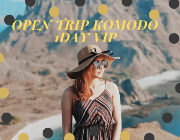Open Trip Komodo 1Day VIP (Speedboat)